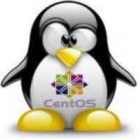 هاست 1000 مگ لینوکس ایران